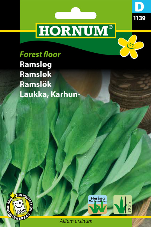 "Ramslök ""Forest Floor"""