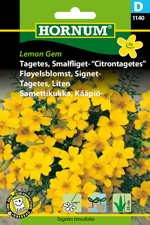 "Citron Tagetes ""Lemon Gem"""