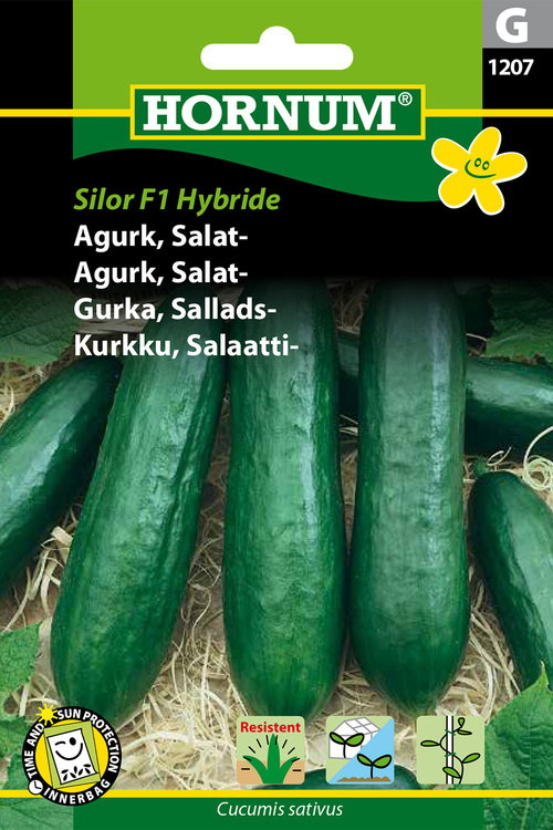 "Salladsgurka ""Silor F1 Hybride"""