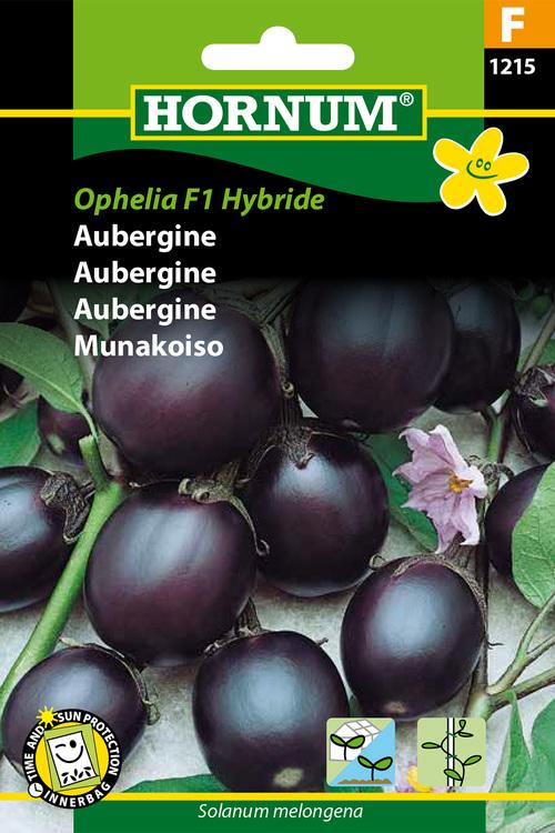 """Aubergine """"Ophelia F1 Hybride"""""""