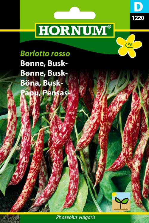 "Buskböna ""Borlotto Rosso"""