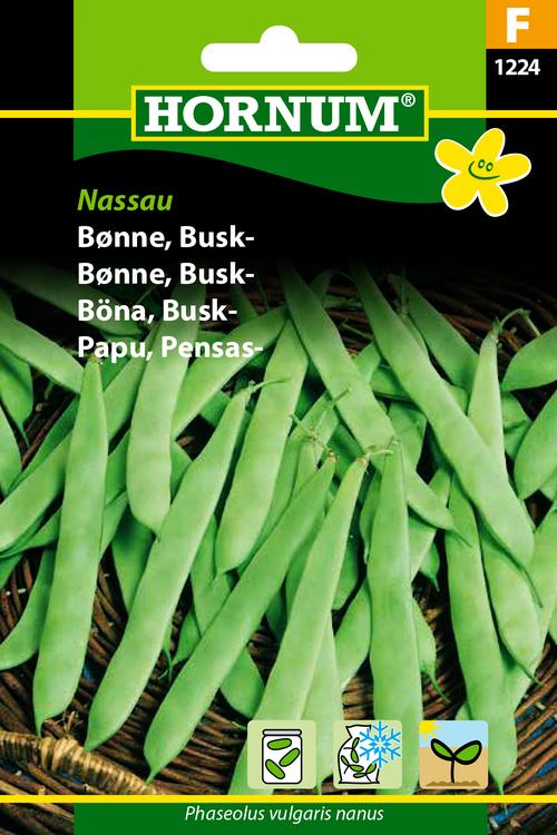 """Buskböna """"Nassau"""""""