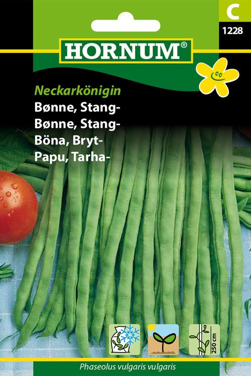 "Brytböna ""Neckarkönigin"""