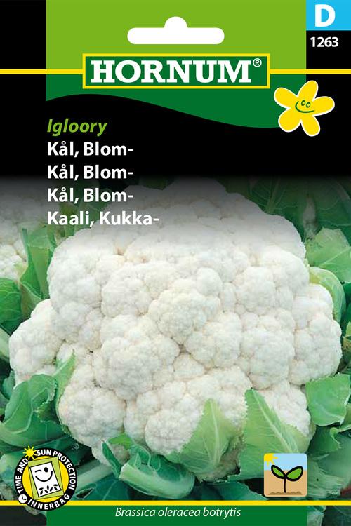 """Blomkål """"Igloory"""""""