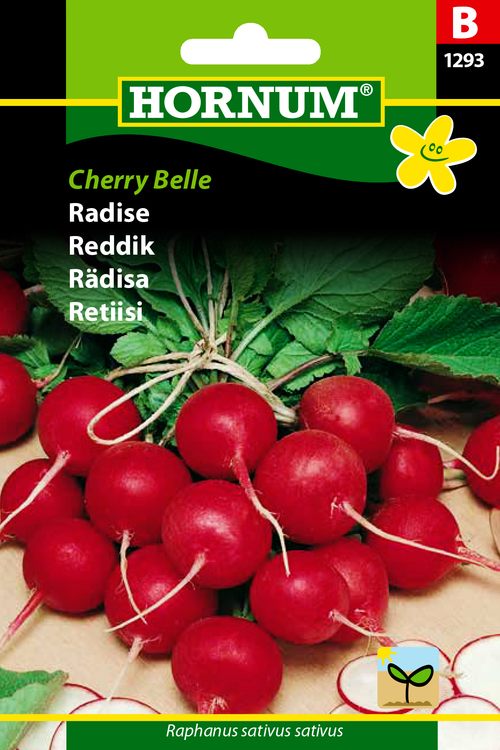 "Rädisa ""Cherry Belle"""
