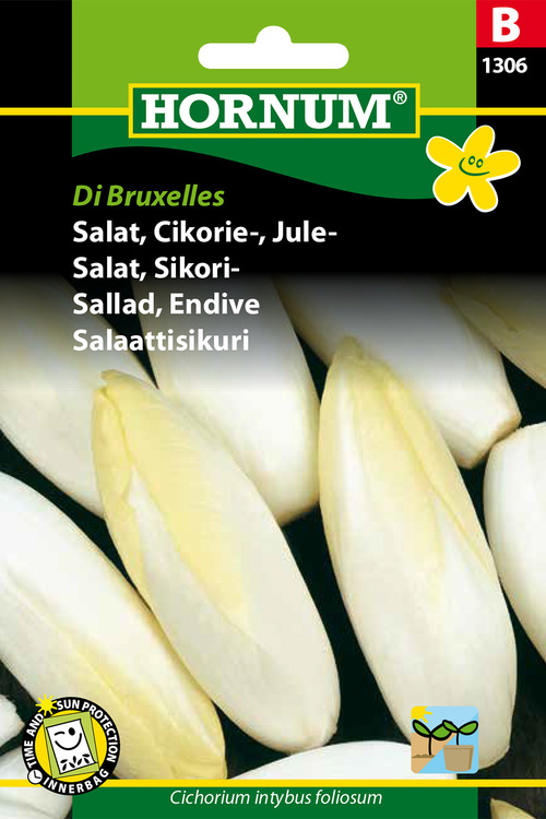 """Endive sallad """"Di Bruxelles"""""""