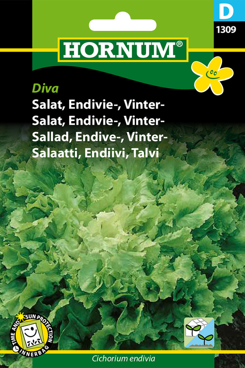 "Vinter Endivesallad ""Diva"""