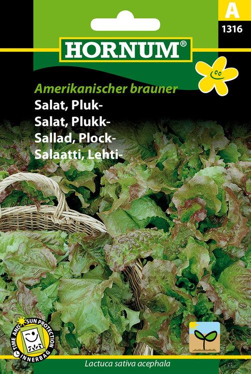 """Plocksallad """"Amerikanischer Brauner"""""""