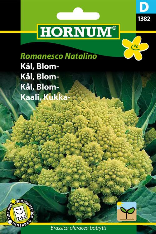 "Blomkål ""Romanesco Natalino"""
