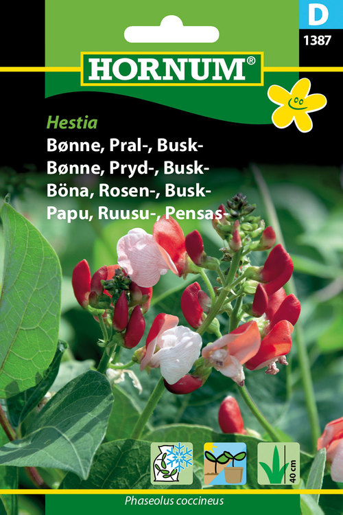 "Blomsterböna, busk ""Hestica"""