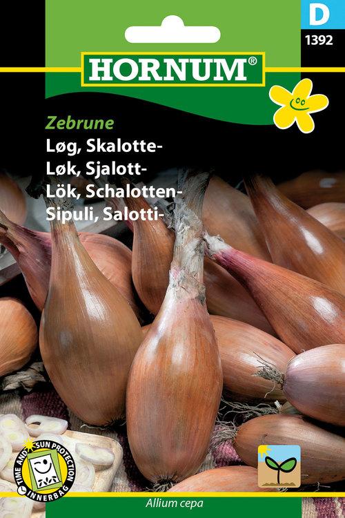 """Schalottenlök """"Zebrune"""""""