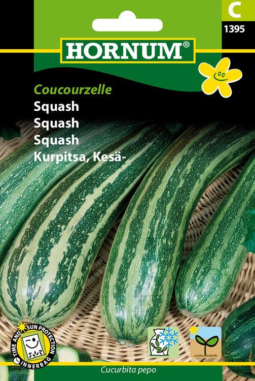 """Squash """"Coucouzelle"""""""