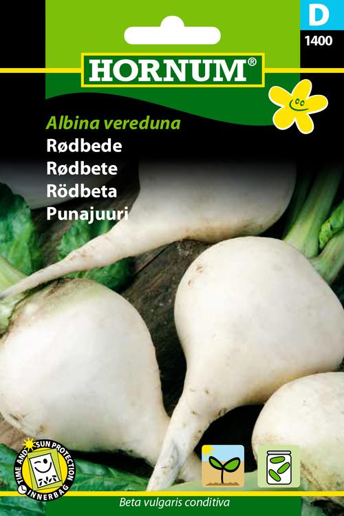 """Rödbeta """"Albina Vereduna"""""""
