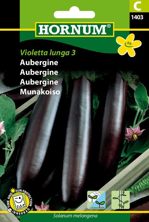 """Aubergine """"Violetta lunga 3"""""""