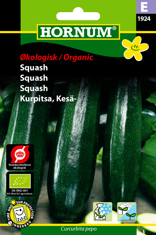 Squash - Eko