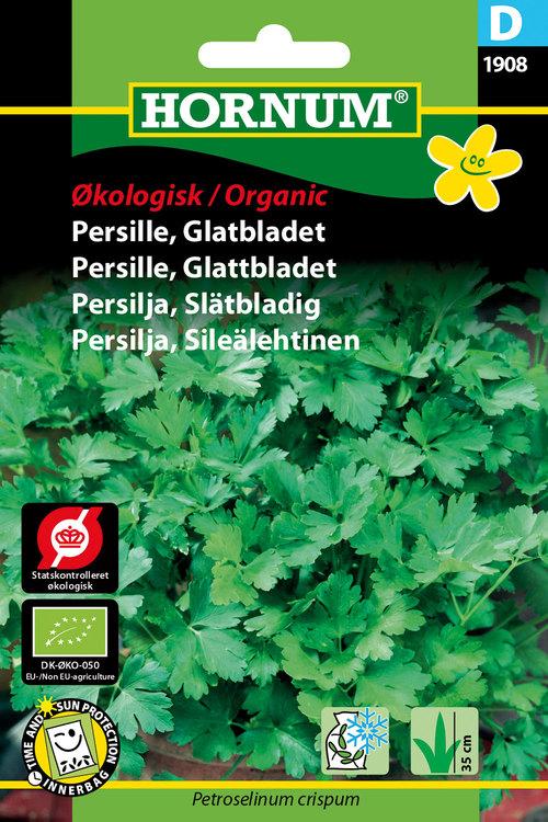 Slätbladig Persilja - Eko
