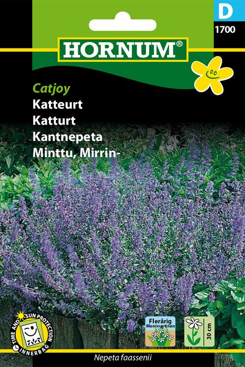 "Kantnepeta ""Catjoy"""