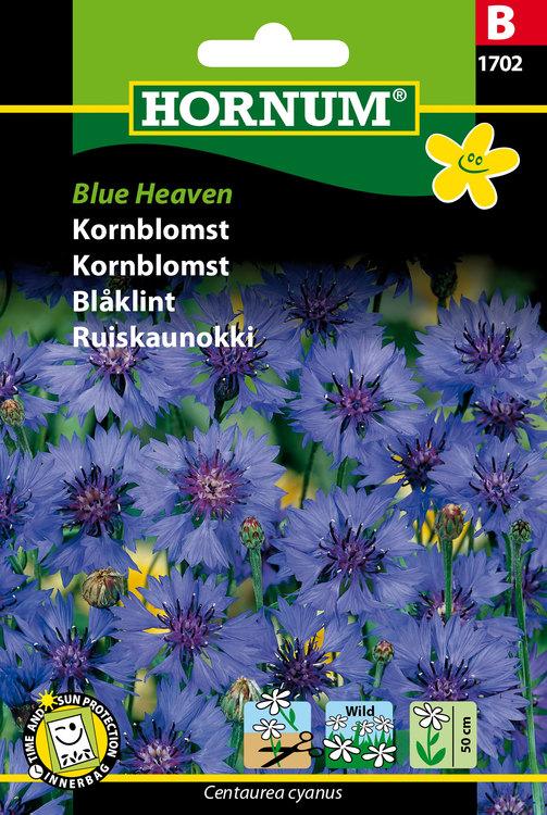 """Blåklint """"Blue Heaven"""""""