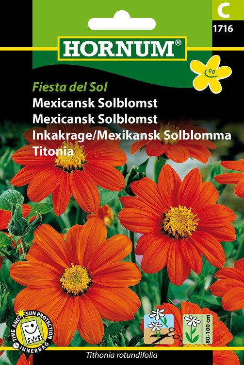 "Mexikansk solblomma ""Fiesta del Sol"""