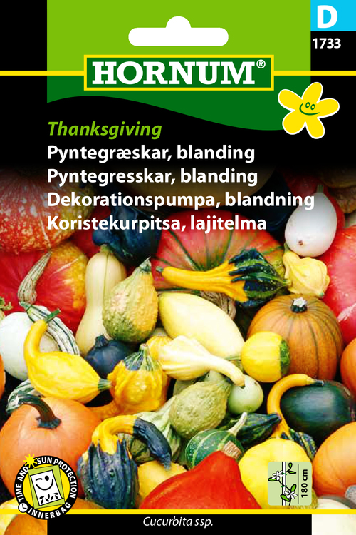 "Dekorationspumpa, mix ""Thanksgiving"""