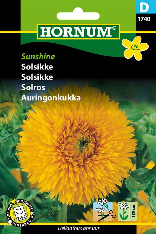"Solros ""Sunshine"""