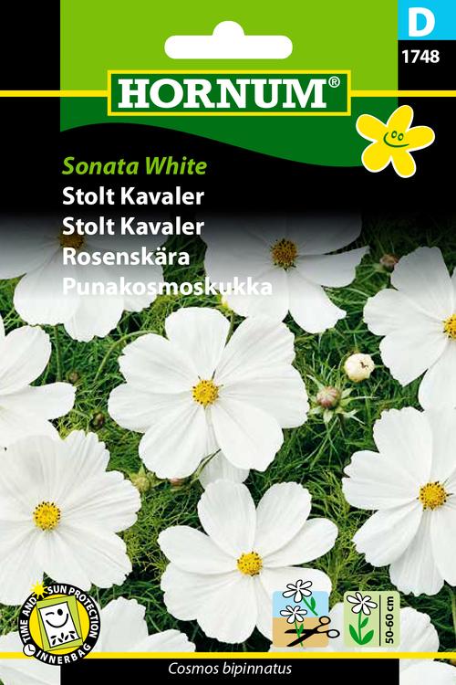 """Rosenskära """"Sonata White"""""""