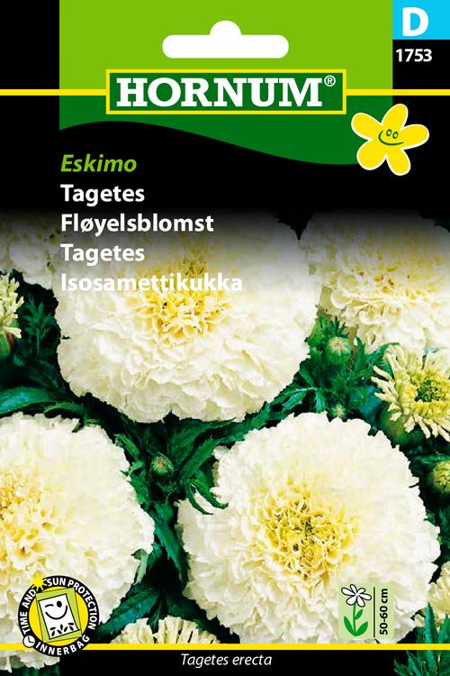 """Tagetes """"Eskimo"""""""