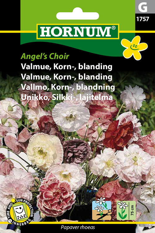 "Korn Vallmo ""Angel's Choir"""