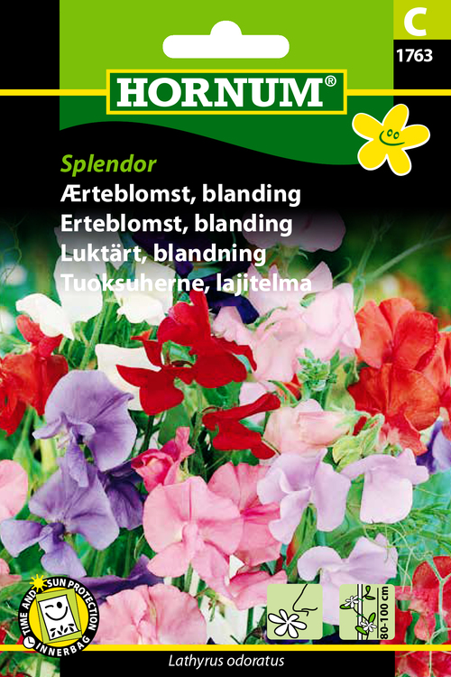 "Luktärt, mix ""Splendor"""
