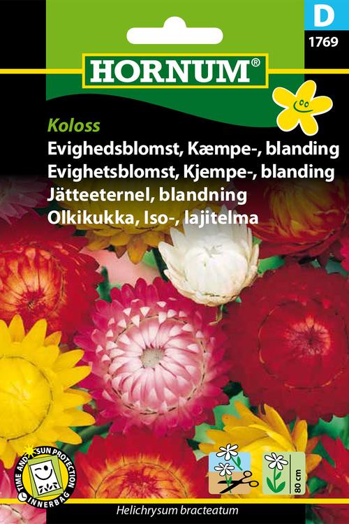 """Jätteeternel, mix """"Koloss"""""""