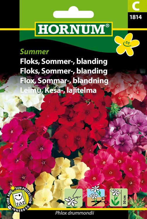 """Sommar Flox """"Summer"""""""