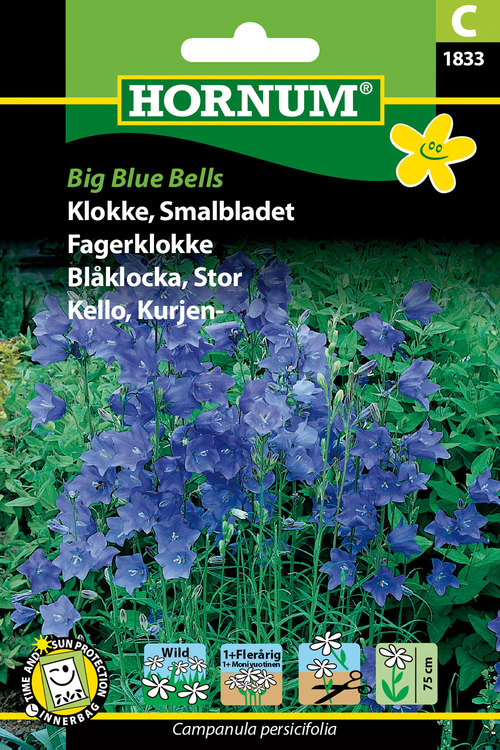 "Stor Blåklocka ""Big Blue Bells"""