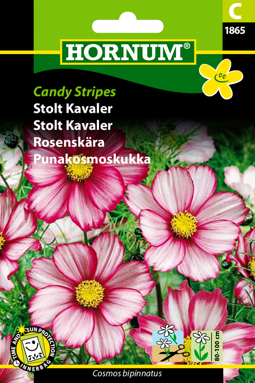 "Rosenskära ""Candy Stripes"""