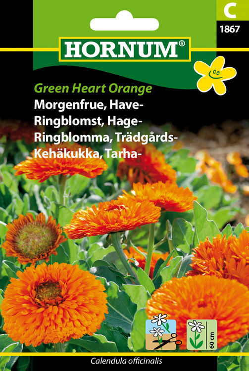 "Trädgårds Ringblomma ""Green Heart Orange"""