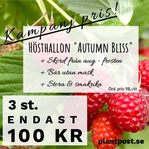 PlantPost