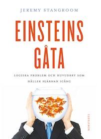 """Stangroom, Jeremy """"Einsteins gåta - Gåtor och problem som kan lösas - om du tänker som Einstein!"""" HÄFTAD"""
