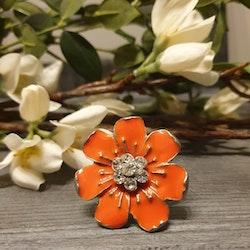 Ring orangebloom