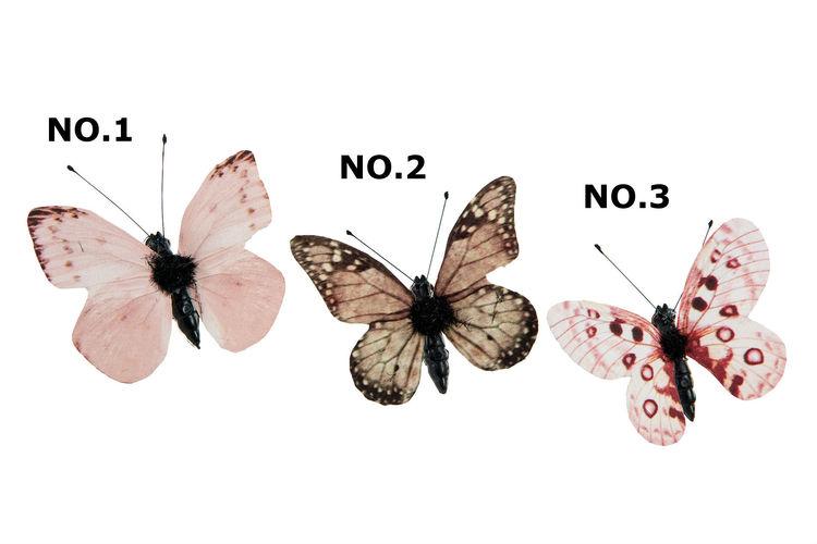 Fjäril Clip NO.2  5 cm