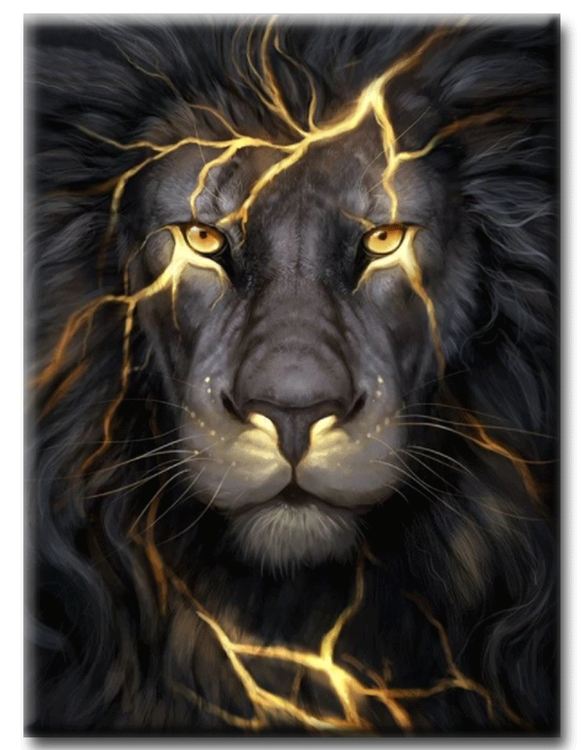 Diamanttavla Black Lion 40x50