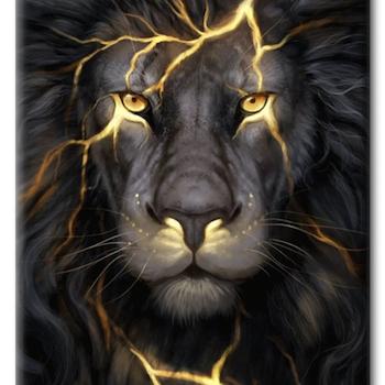 Diamanttavla Black Lion 40x50