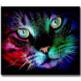 Diamanttavla Color Cat 30x40