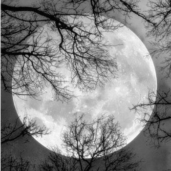 Diamanttavla Full Moon 40x50