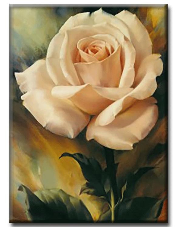 Diamanttavla Rose Creame 30x40