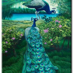 Diamanttavla Peacock Couple 50x70