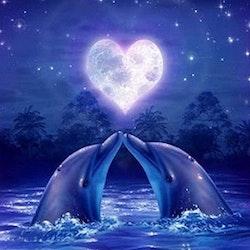 Diamanttavla (R) Dolphin Love 40x50