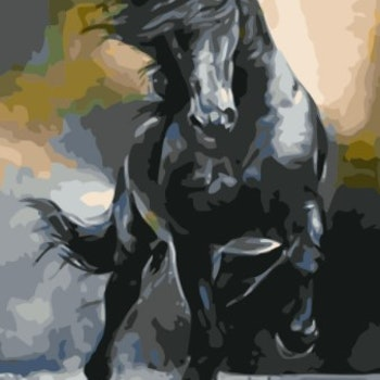 Paint By Numbers Black Horse 40x50 - leveranstid 1-3 Dagar