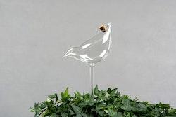 Bevattningsglas Fågel 10x25 cm