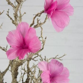 Fjäder blom Cerise 12 st