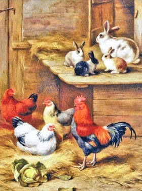 Diamanttavla Hens And Rabbits 40x50