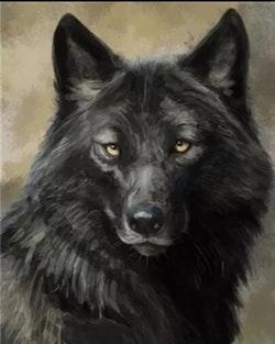 Diamanttavla Black Wolf 40x50